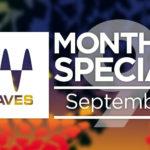 [DTMスクールニュース]「Waves September Specials」がスタート!