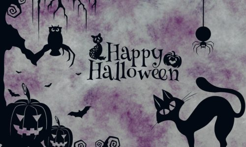 [DTMスクールニュース]halloween-sale-2018-2