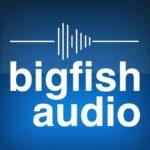 [DTMニュース]「BIG FISH AUDIO」「VIR2」のサンプルパックやソフト音源が半額で購入できるグリーンタグセールが開催中!