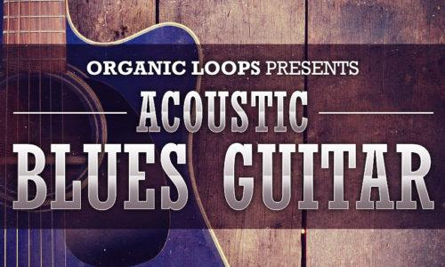 [DTMニュース]organic-loops-acoustic-sale-2019-1