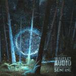 [DTMニュース]Wavelet Audioのアンビエントサウンドに適した音源「Senfine」が30%offのセール価格で販売中!