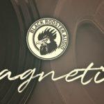 [DTMニュース]Black Rooster Audioのアナログテープエミュレーター「MAGNETITE」が78%offで販売中!