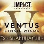[DTMニュース]Impact Soundworksの世界の木管楽器ライブラリ「Ventus Ethnic Winds Bundle」 が54%off!