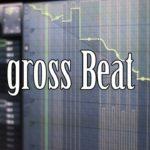 [DTMニュース]Image Lineのインスタントでパワフルなエフェクトプラグイン「Gross Beat」が50%off!