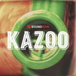 [DTMニュース]Soundironのカズー・アンサンブルを収録したKONTAKTライブラリ「Kazoo」が33%off!