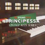 [DTMニュース]Soundironのヴィンテージオルガンサウンドをキャプチャした「Principessa」が34%off!