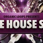 [DTMニュース]Organic Loopsのライブホーンジャムをフィーチャーした「Live House Sax」が50%off!
