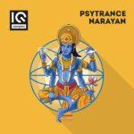 [DTMニュース]IQ Samples「Psytrance Narayan」サイトランス系おすすめサンプルパック紹介!