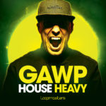 [DTMニュース]Loopmasters「Gawp – House Heavy」ハウス系おすすめサンプルパック紹介!