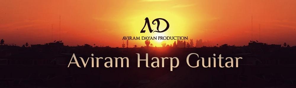 [DTMニュース]aviram-dayan-harp-guitar-1