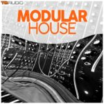 [DTMニュース]Industrial Strength「TD Audio – Modular House」ハウス系おすすめサンプルパック!