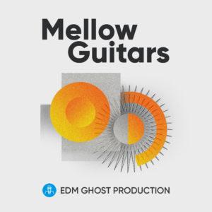 [DTMニュース]edm-ghost-mellow-guitars-1