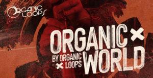 [DTMニュース]organic-loops-organic-world-2