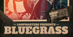 loopmasters-vibes-14-bluegrass-2