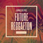 [DTMニュース]Loopmasters「Future Reggaeton」レゲトン系おすすめサンプルパック!