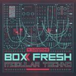 [DTMニュース]Looptone「Box Fresh Modular Techno」テクノ系おすすめサンプルパック!