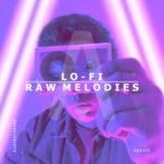 [DTMニュース]Audiostrasse「Lo-fi Raw Melodies」IDM系おすすめサンプルパック!
