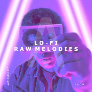 audiostrasse-lo-fi-raw-melodies