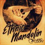 [DTMニュース]Organic Loops「Ethnic Mandolin」エスニック系おすすめサンプルパック!