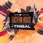 [DTMニュース]5Pin Media「Eastern House & Tribal」トライバルハウス系おすすめサンプルパック!
