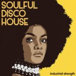 [DTMニュース]Industrial Strength「Soulful Disco House」ディスコ系おすすめサンプルパック!