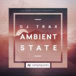 [DTMニュース]RV Samplepacks「DJ Trax – Ambient State」アンビエント系おすすめサンプルパック!