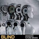 [DTMニュース]Blind Audio「Advanced Future Breaks」ブレイクス系おすすめサンプルパック!