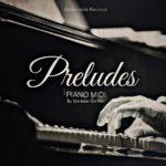 [DTMニュース]Delectable Records「Preludes Piano」ピアノ系おすすめサンプルパック!