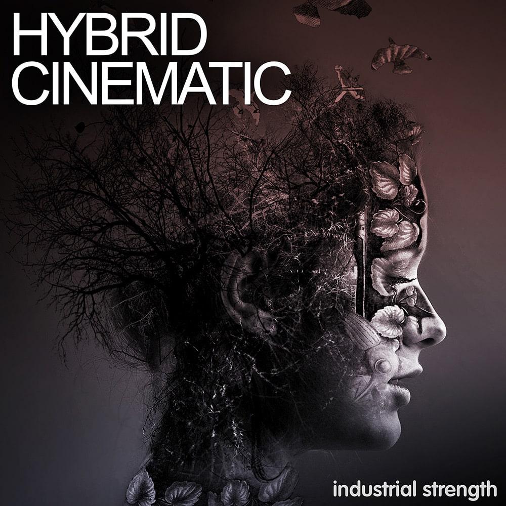 industrial-strength-hybrid-cinema