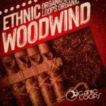 [DTMニュース]Organic Loops「Ethnic Woodwind」エスニック系おすすめサンプルパック!