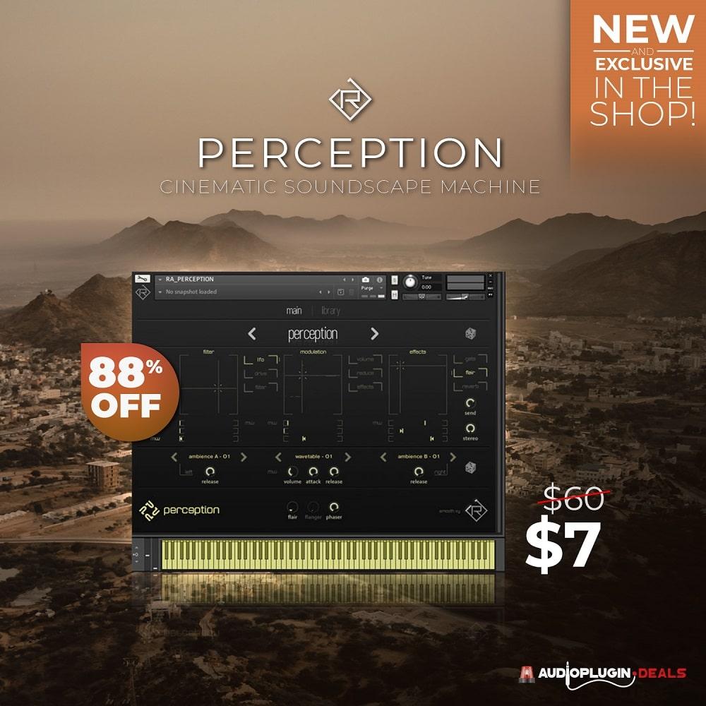 rigid-audio-perception