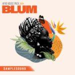 [DTMニュース]SAMPLESOUND「Blum Afro House」アフロハウス系おすすめサンプルパック!