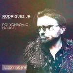 [DTMニュース]Loopmasters「Rodriguez Jr. – Polychromic House」ハウス系おすすめサンプルパック!