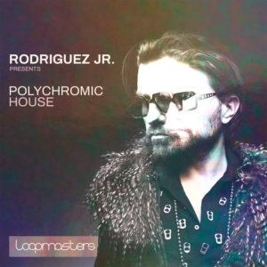 loopmasters-rodriguez-jr-poly