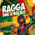 [DTMニュース]Singomakers「Ragga DnB & Vocals」ドラムンベース系おすすめサンプルパック!